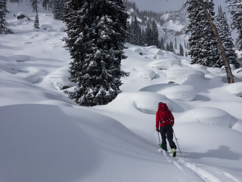 "Testing skins and hunting pillows in Grand Teton National Park. We find that the real world of ski touring highlights advantages and issues of climbing skins better than any series of ""tests""."